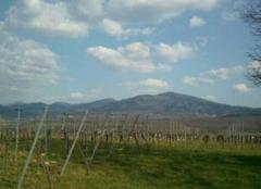 Ciel Freiburg im Breisgau Schwartzwald début du printemps