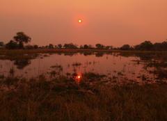 Chaleur Katima Mulilo Les marais en brousse