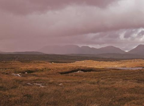 Grain sur le Connemara