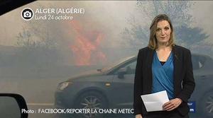 Alger : chaleur extr�me et incendies