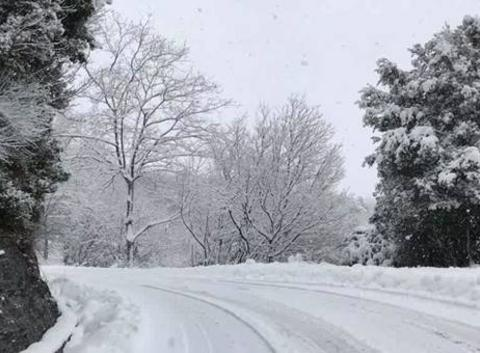 Promenade sous la neige ??????