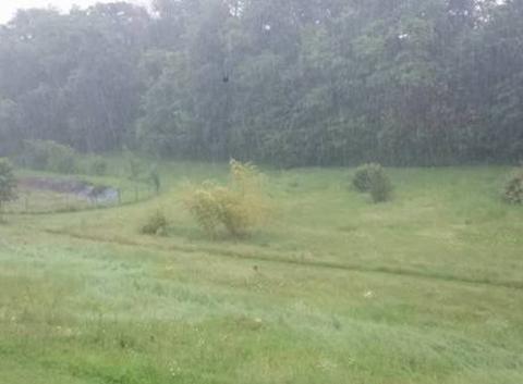 Pluie en Charente