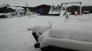 Mercredi 7 fevrier matin chute de neige importante
