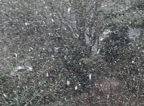 La neige tombe bien