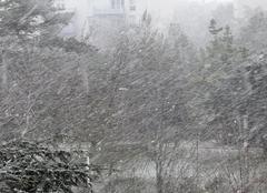 Niort 79000 Fortes chutes de neige à Niort