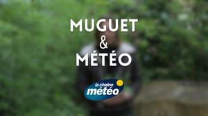 Vidéo Muguet du 1er mai : l'influence de la météo