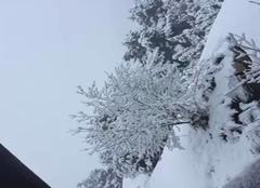 Neige Saint-Etienne-en-Devoluy 05250 L?hiver revient dans le DEVOLUY